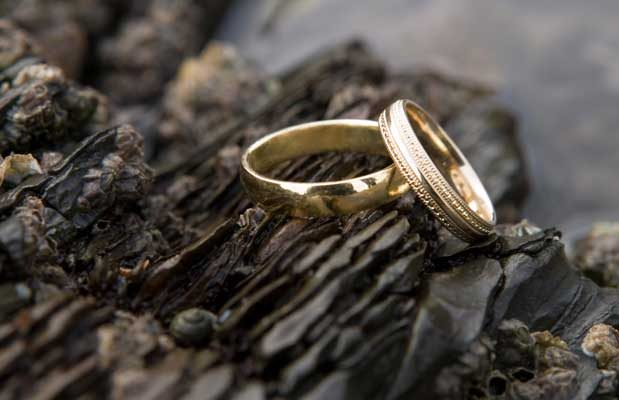 these were photographs of wedding rings